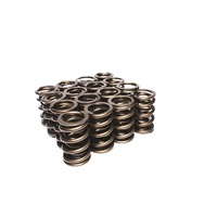 944-16 Engine Valve Spring Kit