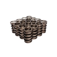 995-16 Engine Valve Spring Kit